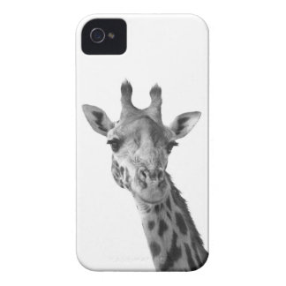 Girafa preto & branco capa para iPhone