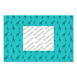 Girafas de turquesa impressão de foto