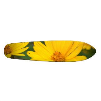 Girassóis falsos de florescência skate