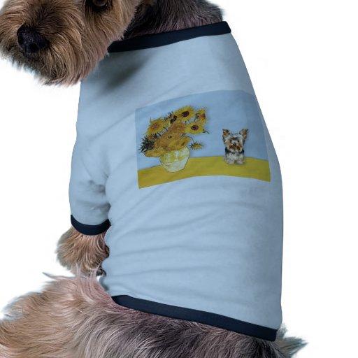 Girassóis - yorkshire terrier 17 roupas para caes