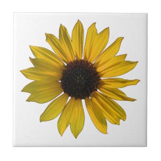 Girassol brilhante do solteiro do amarelo azulejo quadrado pequeno