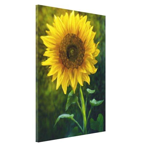 Girassol - canvas de arte 18x24 do jardim impressão em tela canvas