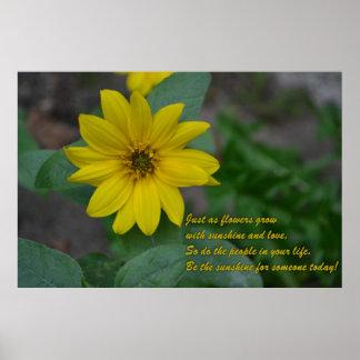 Girassol com citações inspiradas impressão
