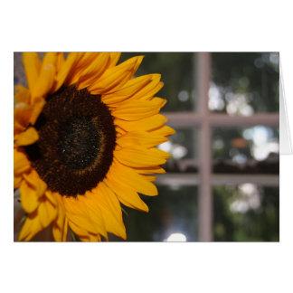 Girassol na janela cartão comemorativo