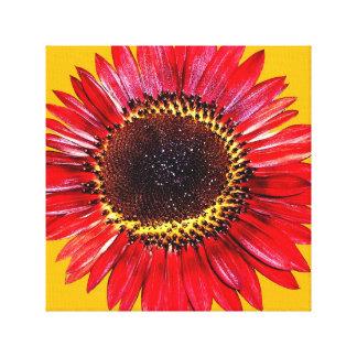 Girassol vermelho brilhante da beleza do outono na impressão de canvas envolvida