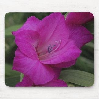 gladiola roxo mouse pad