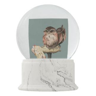 Globo De Neve Retrato da aguarela dos irmãos da coruja