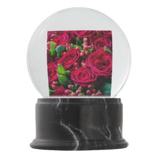 Globo De Neve Rosas vermelhas