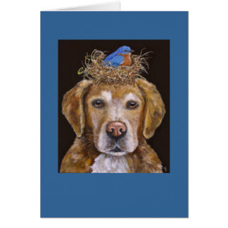 golden retriever e cartão do bluebird