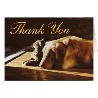 Golden retriever e cartões de agradecimentos do