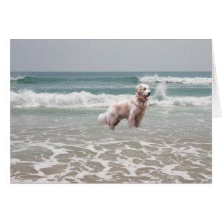 Golden retriever pelo cartão do mar
