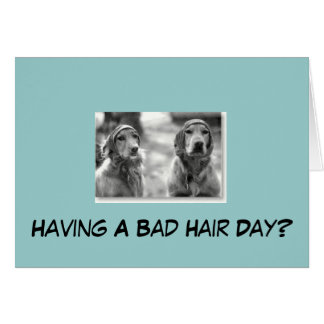 Golden retriever que tem um cartão mau do cabelo