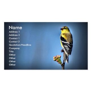 Goldfinch americano cartao de visita