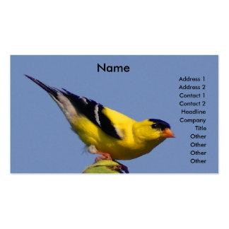 Goldfinch americano cartão de visita