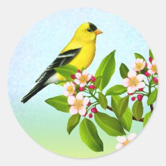 Goldfinch americano na etiqueta das flores de
