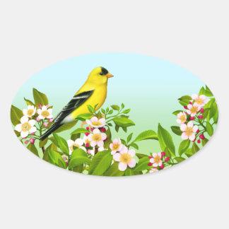 Goldfinch americano na etiqueta do Oval das flores