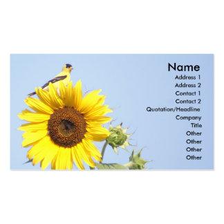 Goldfinch americano no girassol cartão de visita