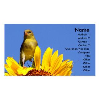 Goldfinch americano no girassol cartao de visita