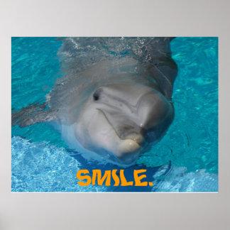 Golfinho de sorriso bonito poster