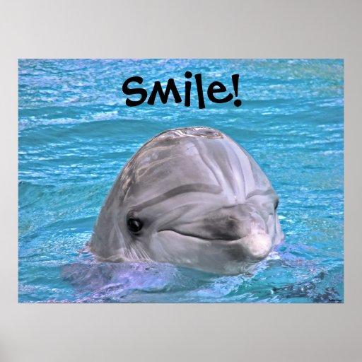 Golfinho de sorriso - sorriso! posteres