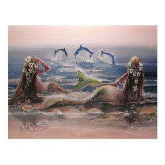 Golfinhos & cartão das sereias