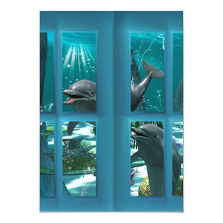 Golfinhos engraçados