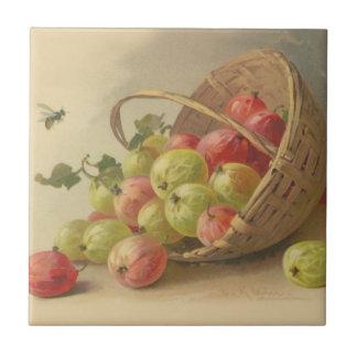 Gooseberries do vintage azulejo quadrado pequeno