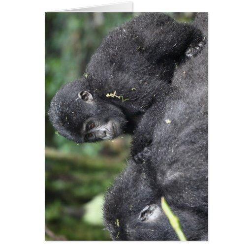 Gorila de montanha infantil cartão