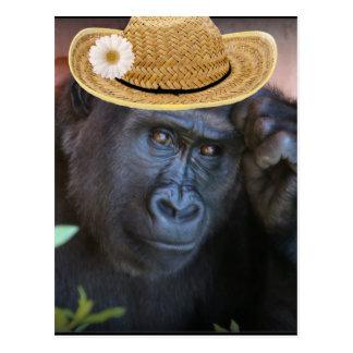 Gorila em um chapéu de palha, cartão postal