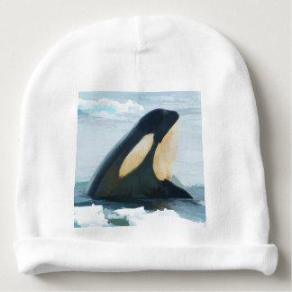 Gorro Para Bebê Baleia Spyhop da orca