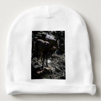 Gorro Para Bebê Carneiros de Bighorn da montanha rochosa, ovelha