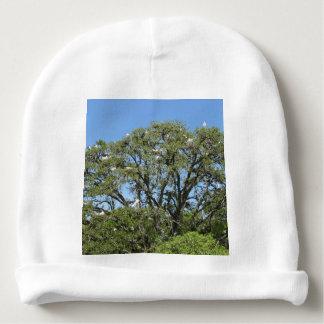 Gorro Para Bebê Egrets brancos em uma árvore