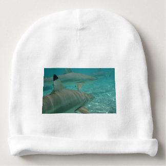 Gorro Para Bebê shark