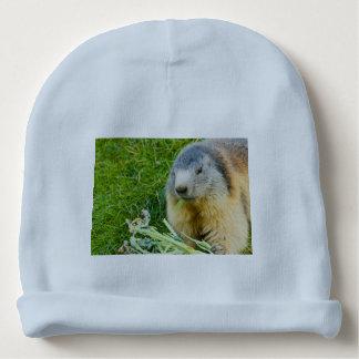 Gorro Para Bebê uma marmota sociável no Beanie do algodão do bebê
