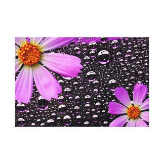 Gota da chuva com flor do cosmos impressão em canvas
