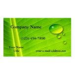 Gotas da folha e da água cartões de visita