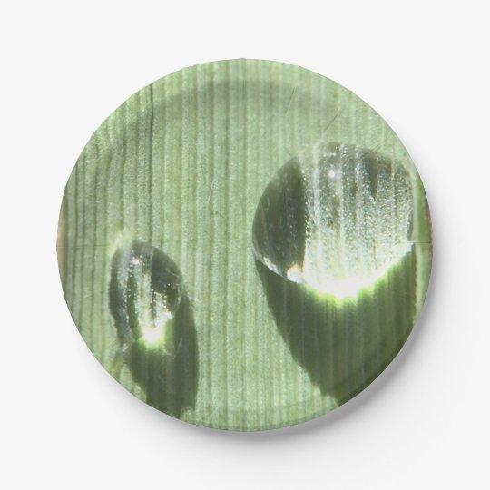 Gotas de orvalho
