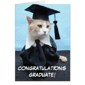 Graduação Cartao