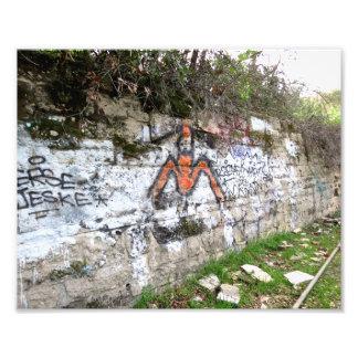 Grafites no jardim zoológico velho do LA Impressão Fotográficas