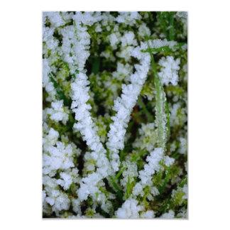 Grama congelada do inverno convite 8.89 x 12.7cm