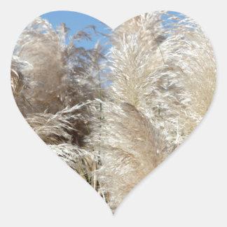 Grama de Pampas com um céu azul ensolarado Adesivo Coração