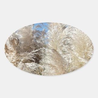 Grama de Pampas com um céu azul ensolarado Adesivo Oval