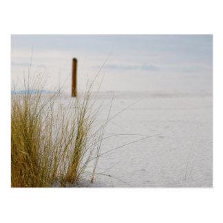 Gramas das areias brancas - cartão