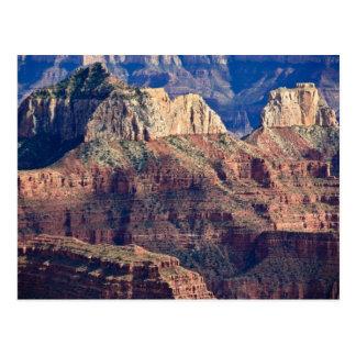 Grand Canyon norte da borda - nacional do Grand Cartão Postal