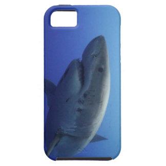 Grande caixa de IPhone 5 do tubarão branco Capas Para iPhone 5