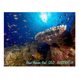 Grande cartão do recife de coral