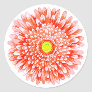 Grande etiqueta redonda lustrosa do Gerbera
