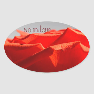 Grande etiqueta romântica da rosa vermelha