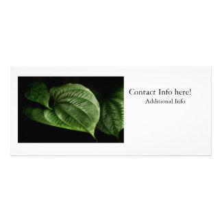 Grande folha verde 10.16 x 22.86cm panfleto