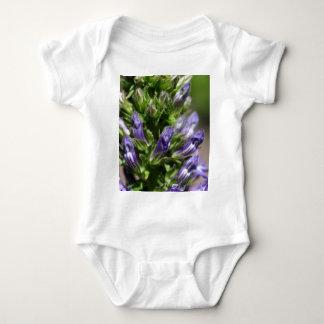 Grande Lobelia azul (siphilitica do Lobelia) Body Para Bebê